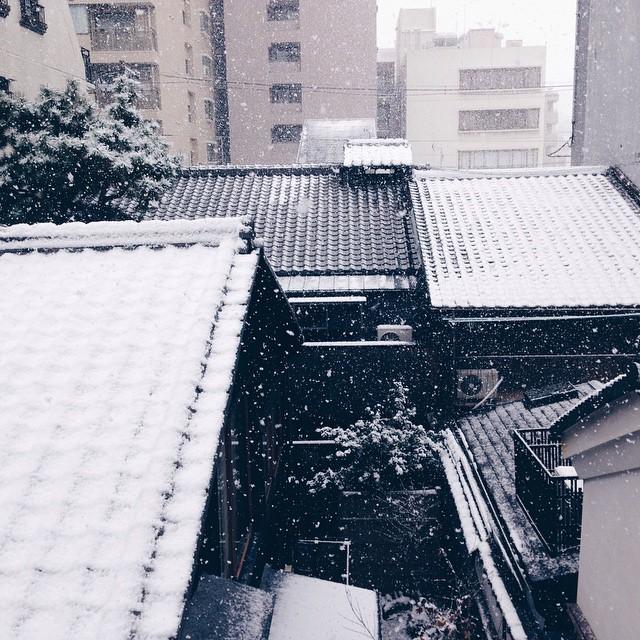 外が白くなってる