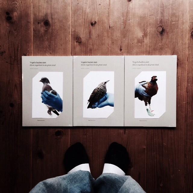 Anjes Gesink / Vogels Huilen Niet (Birds Don't Cry)鳥類保護区で保護された野鳥のポートレート。青い手袋と野鳥が一緒に写っています。表紙は3種類別で入荷。