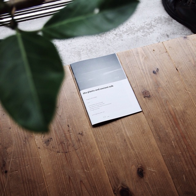 SuguruRYUZAKI / theplantsandancienttalk日常と植物と愛の物語
