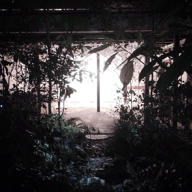 art space AREが茂ってた。いっしゅん露天風呂??とか思ったけど、空の抜けたスペースと森林で異空間に。ウチの家もやってほしい。