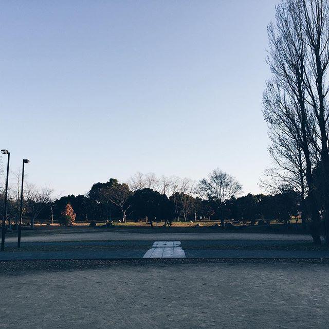 あけましておめでとうございます。昨年度は大変お世話になりました。2016年はたくさんの新しいことにチャレンジしていこうと思います。今年度もどうぞよろしくお願いいたします。新年の営業始めは1/7からです。皆様のお越しお待ちしております。ここはハタチくらいまでずっと遊んでた家の前の公園。