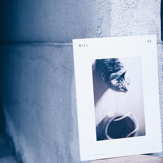 MILLISSUE 02猫と豊かに暮らすためのアイデアを提案するライフスタイルマガジン。2号目もキュンキュン。