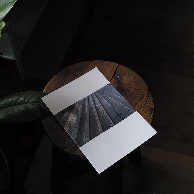 ネギが道に落ちてる画像を集めたフリーペーパー届きました。